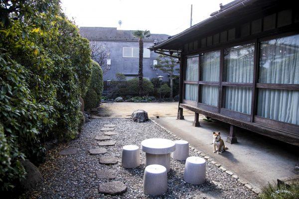 庭スタジオ